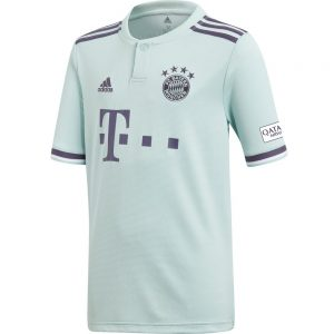 Bayern Munich Adult Away Jersey (18/19) 12