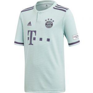Bayern Munich Youth Away Jersey (18/19) 5