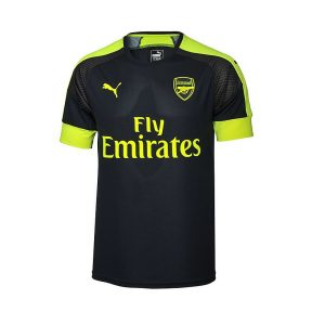 Arsenal Adult 3rd Jersey (16/17) 11