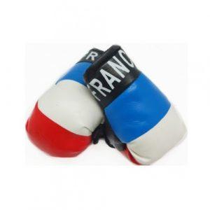 Mini Boxing Glove Set - France 3