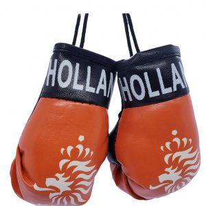 Mini Boxing Glove Set - Netherlands 3
