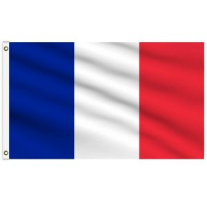 Country Flag (3 x 5) - France 2