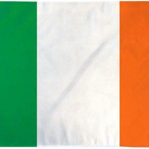 Country Flag (3 x 5) - Republic of Ireland 3